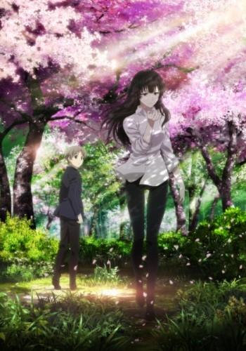 Sakurako-san no Ashimoto ni wa Shitai ga Umatte Iru